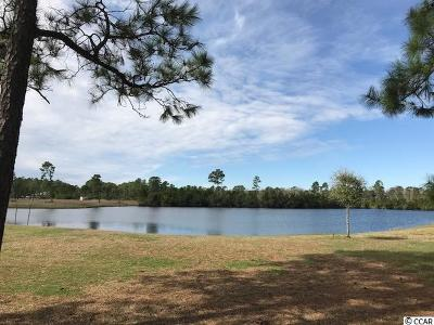 Georgetown County, Horry County Residential Lots & Land For Sale: 489 Starlit Way