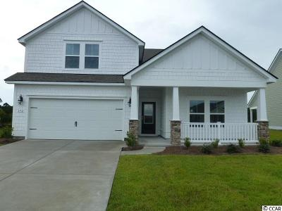 Myrtle Beach Single Family Home For Sale: 192 Sago Palm Dr.