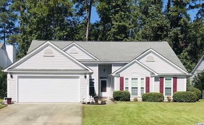 Georgetown County, Horry County Single Family Home For Sale: 2304 Blackbird Ct.