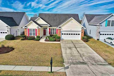 Georgetown County, Horry County Single Family Home For Sale: 539 Sand Ridge Rd.