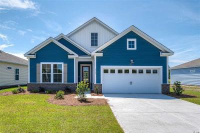 Myrtle Beach Single Family Home For Sale: 6141 Chadderton Circle