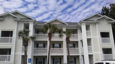 Georgetown County, Horry County Condo/Townhouse For Sale: 517 White River Rd. #22D