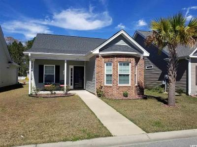 Myrtle Beach Single Family Home For Sale: 111 Palm Cove Circle