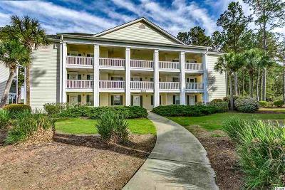 Georgetown County, Horry County Condo/Townhouse For Sale: 4920 Windsor Green Way #303