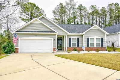 Georgetown County, Horry County Single Family Home For Sale: 266 Palmetto Green Dr.
