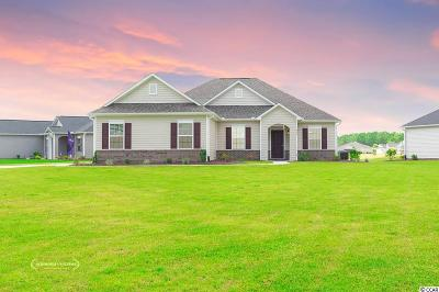 Georgetown County, Horry County Single Family Home For Sale: 470 Carrick Loop