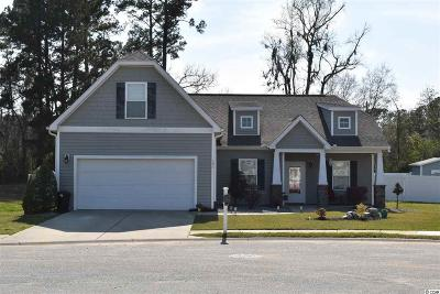 Conway Single Family Home For Sale: 193 Barons Bluff Dr.