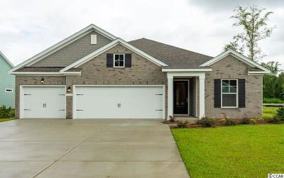 Pawleys Island Single Family Home For Sale: 302 Castaway Key Dr.