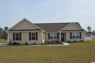 Georgetown Single Family Home For Sale: 46 Rolling Oak Dr.
