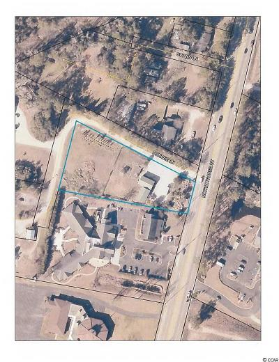 Georgetown County Commercial For Sale: 2659 N Fraser St.
