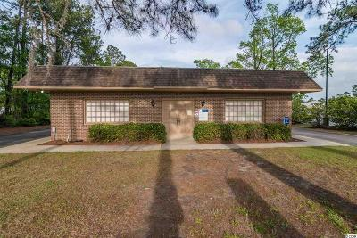 Georgetown County Commercial For Sale: 1306 N Fraser St. #Winyah W