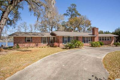 Georgetown Single Family Home For Sale: 239 Egret Circle