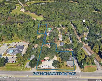 Georgetown County Commercial For Sale: Tbd Ocean Highway #Wilder T