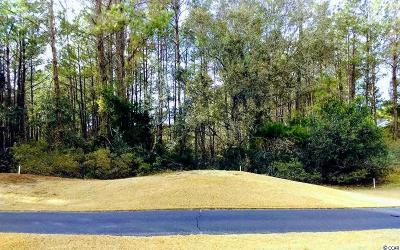 Georgetown County Residential Lots & Land For Sale: Lot 5 Collins Meadow Dr.