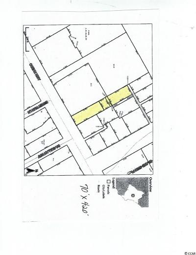 Georgetown County Commercial For Sale: 9737 Ocean Hwy.