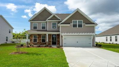 Murrells Inlet Single Family Home For Sale: 229 Star Lake Dr.