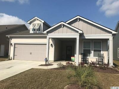 Myrtle Beach Single Family Home For Sale: 802 Berkshire Ave.