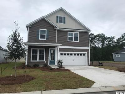 Myrtle Beach Single Family Home For Sale: 6215 Chadderton Circle