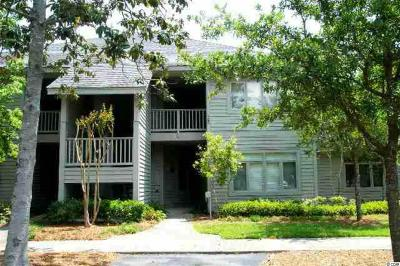 North Myrtle Beach Condo/Townhouse For Sale: 1221 Tidewater Dr. #421