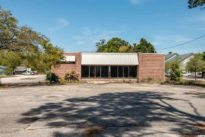 Georgetown County Commercial For Sale: 52 Capers Way #Former C