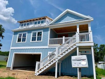 Murrells Inlet Single Family Home For Sale: 3890 Highway 17 Business