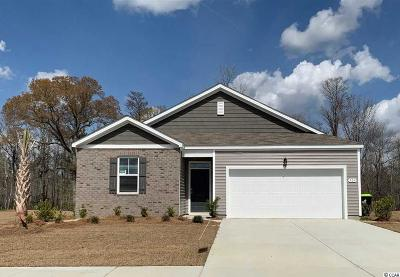 Conway Single Family Home For Sale: 304 Carmello Circle