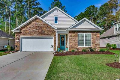North Myrtle Beach Single Family Home For Sale: 1128 Inlet View Dr.
