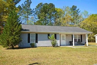 Georgetown Single Family Home For Sale: 193 Savannah St.