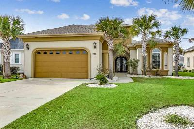 Myrtle Beach Single Family Home For Sale: 997 Bluffs View Dr.