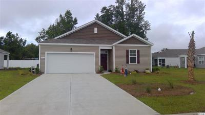 Single Family Home For Sale: 704 Treaty Ct.