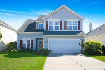 Myrtle Beach Single Family Home For Sale: 373 Skyland Pines Dr.