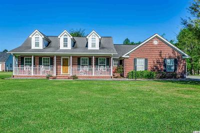 Conway Single Family Home For Sale: 3379 Highway 19
