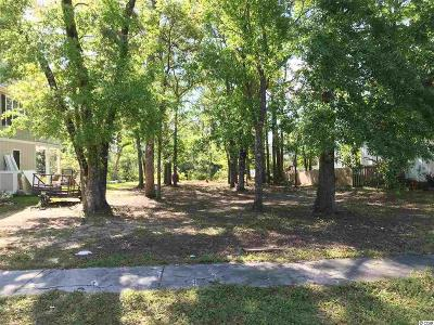 Georgetown County Residential Lots & Land For Sale: 3881 Spanner Way