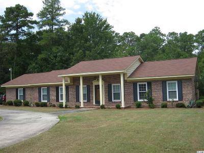 Georgetown County Single Family Home For Sale: 27 Heron Cove