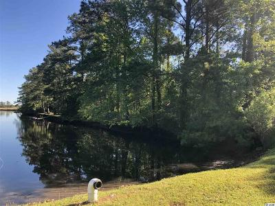 Georgetown County Residential Lots & Land For Sale: 19 Ricefield Pl.