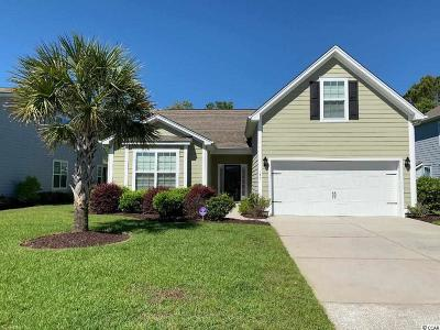 Myrtle Beach Single Family Home For Sale: 171 Coral Beach Circle