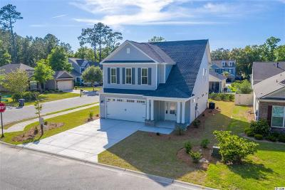 Pawleys Island Single Family Home For Sale: 19 Dunning Rd.