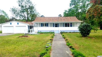 Georgetown County Single Family Home For Sale: 672 Ray Rd.