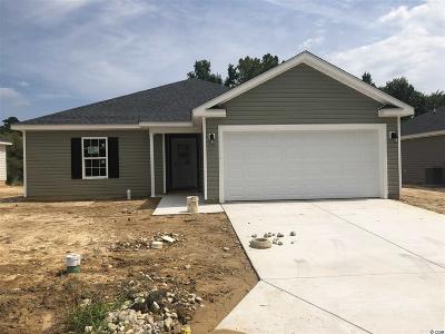 Single Family Home For Sale: 683 Ruthin Ln.