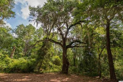 Georgetown County Residential Lots & Land For Sale: Lot L Tuckers Rd.
