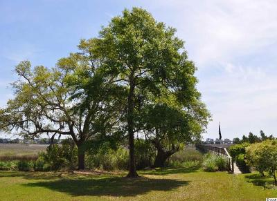 Pawleys Island SC Residential Lots & Land For Sale: $239,900
