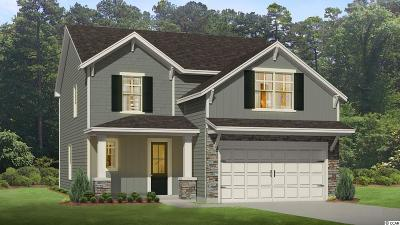 Myrtle Beach Single Family Home For Sale: 2879 Stellar Loop