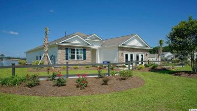Myrtle Beach Single Family Home For Sale: 2628 Stellar Loop