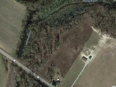Horry County Residential Lots & Land For Sale: 1100 Highway 9 Business W