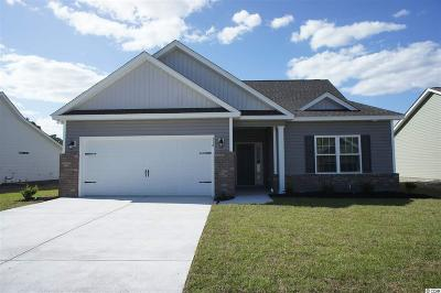 Horry County Single Family Home For Sale: 318 Rycola Circle