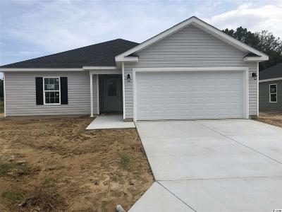Single Family Home For Sale: 679 Ruthin Ln.