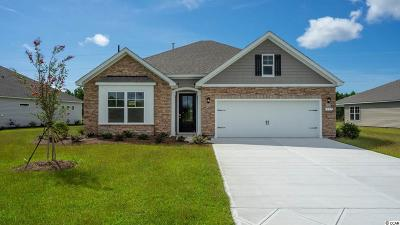 Single Family Home For Sale: 237 Star Lake Dr.