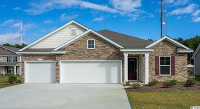 Single Family Home For Sale: 296 Star Lake Dr.