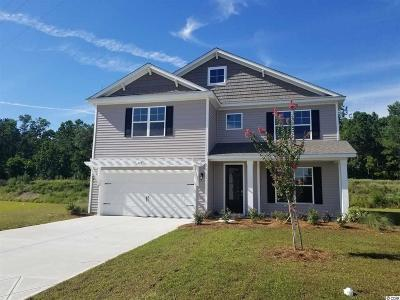 Single Family Home For Sale: 300 Star Lake Dr.