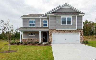 Single Family Home For Sale: 299 Star Lake Dr.